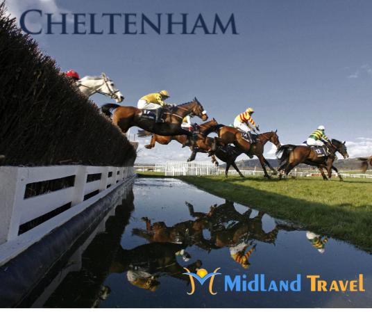 Cheltenham 2020 - 4 Day (Tues & Wed)