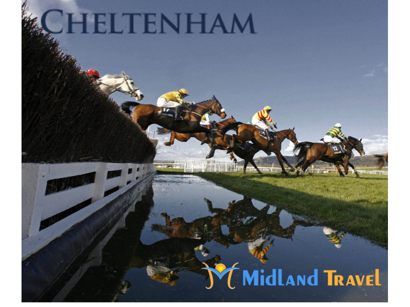 Cheltenham 2020 - 4 Day (Tues & Wed)